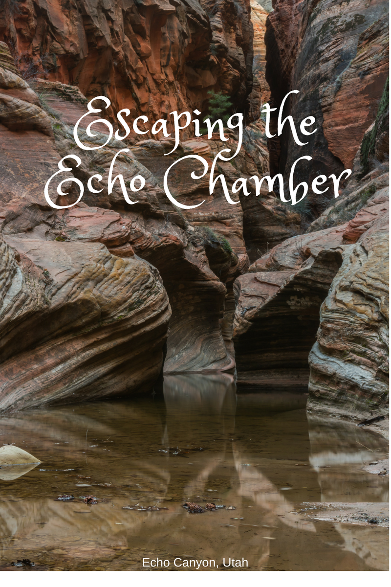 Escaping theEcho Chamber (1)